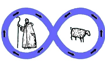 infinity loop of shepherd and sheep